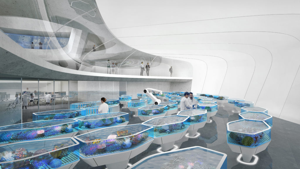 a series of coral aquariums are set up in a large, cavern-like white room