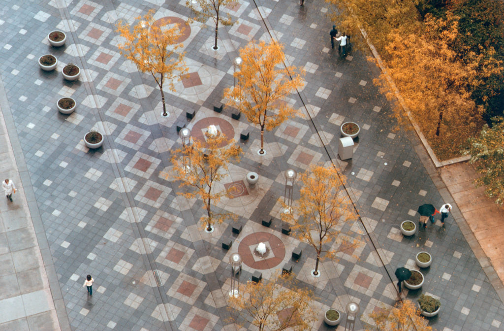 a street with geometric pavers and a double line of trees