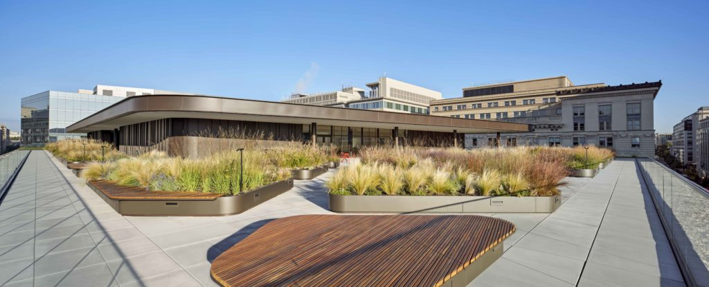 exterior shot of the rooftop deck and auditorium showing green spaces and benches