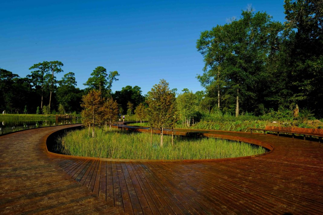 circular wood walkway with untamed greenspaces inside and outside the circle
