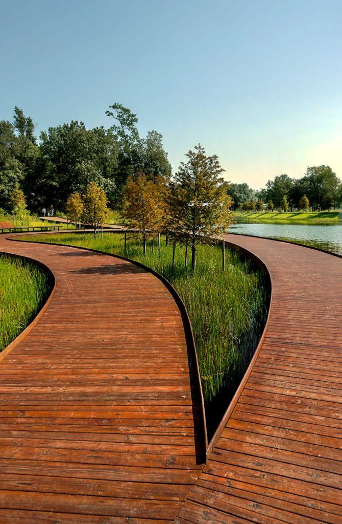 bifurcating wooden walkway in a park setting