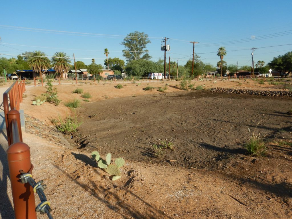 Looking at a shallow basin in a desert landscape